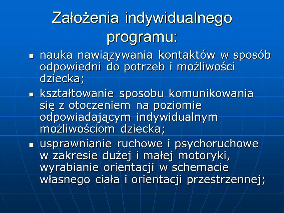 Założenia indywidualnego programu: