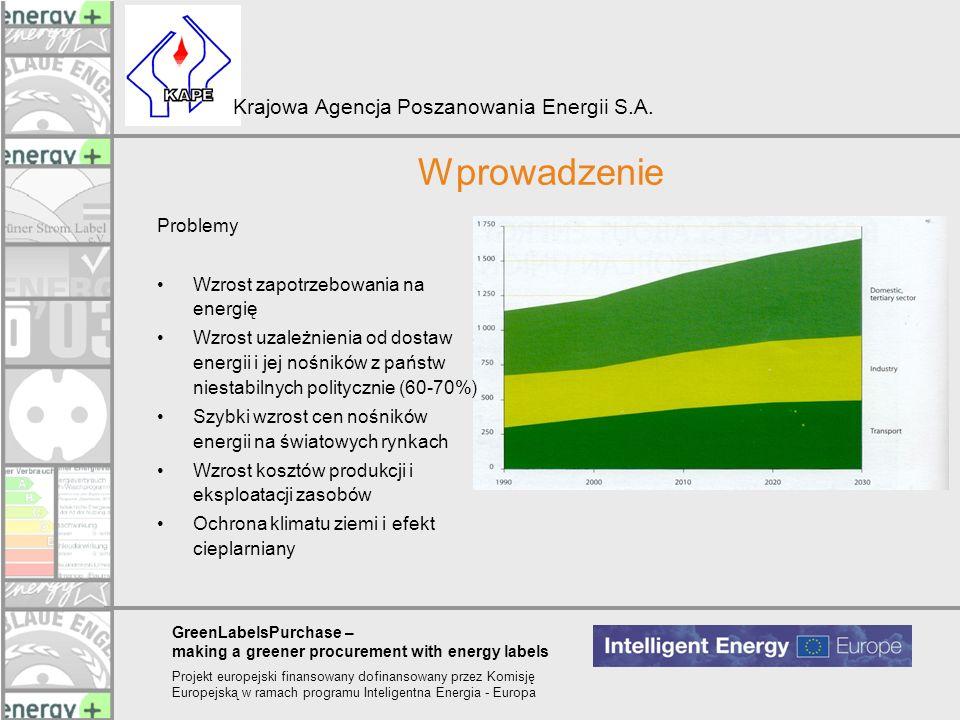 Wprowadzenie Problemy Wzrost zapotrzebowania na energię