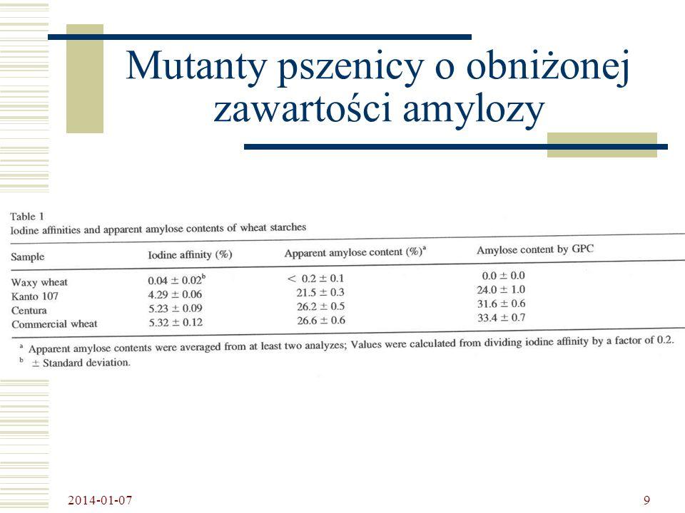 Mutanty pszenicy o obniżonej zawartości amylozy