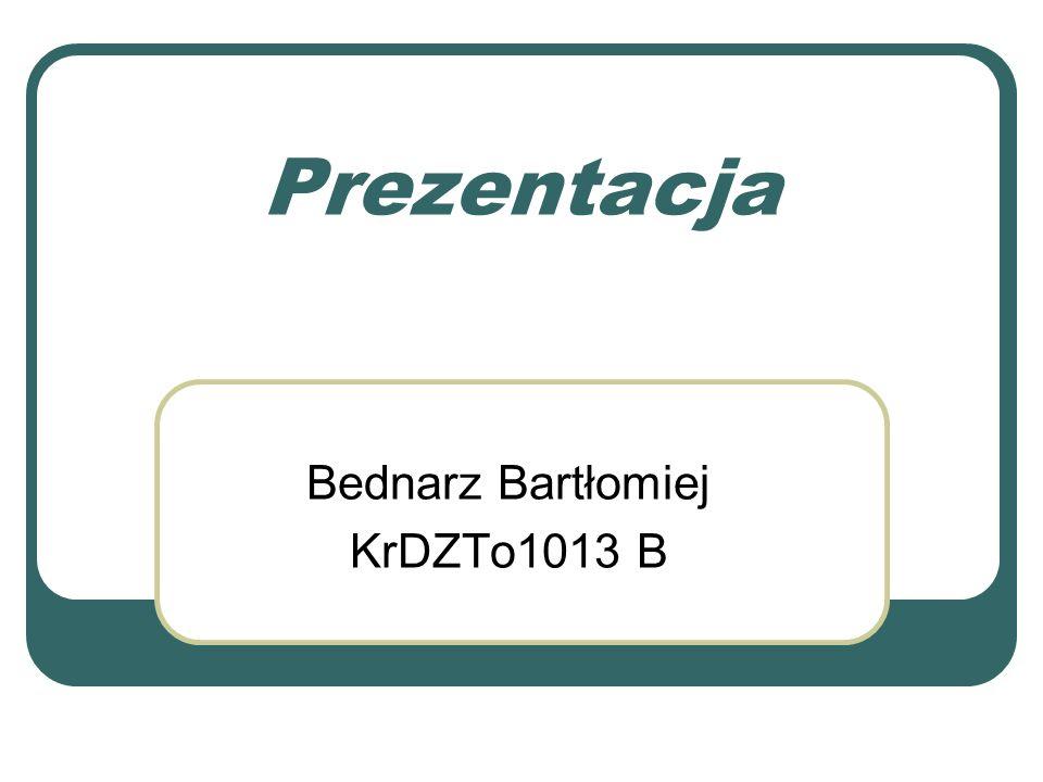 Bednarz Bartłomiej KrDZTo1013 B