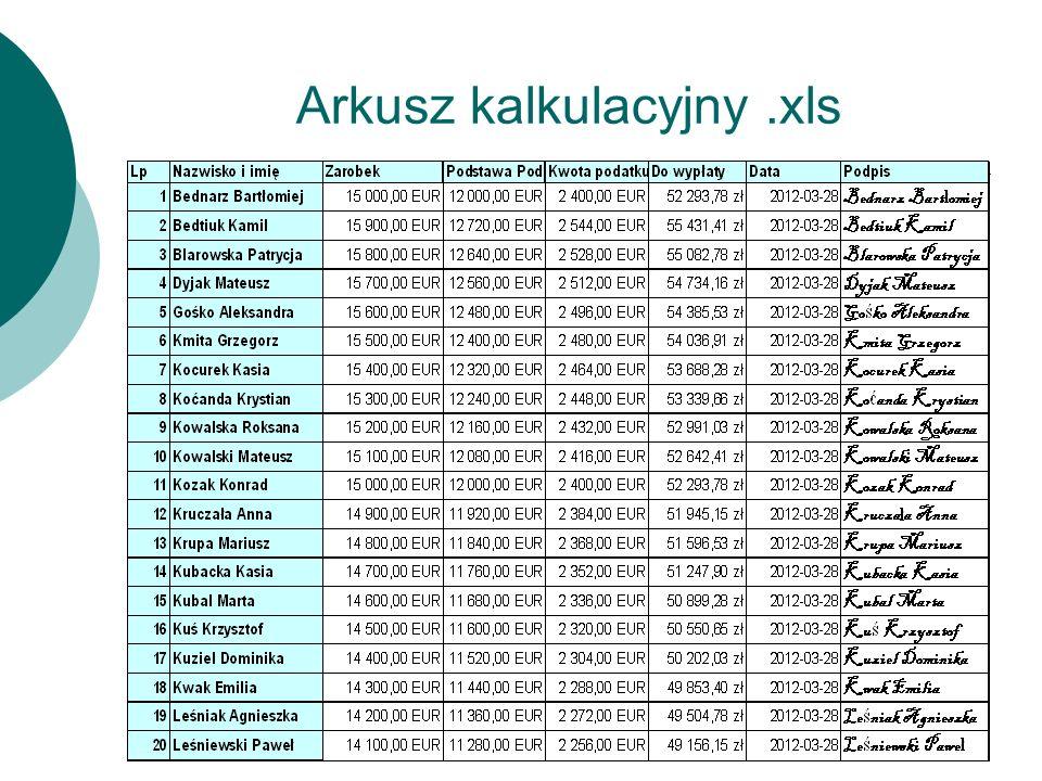 Arkusz kalkulacyjny .xls
