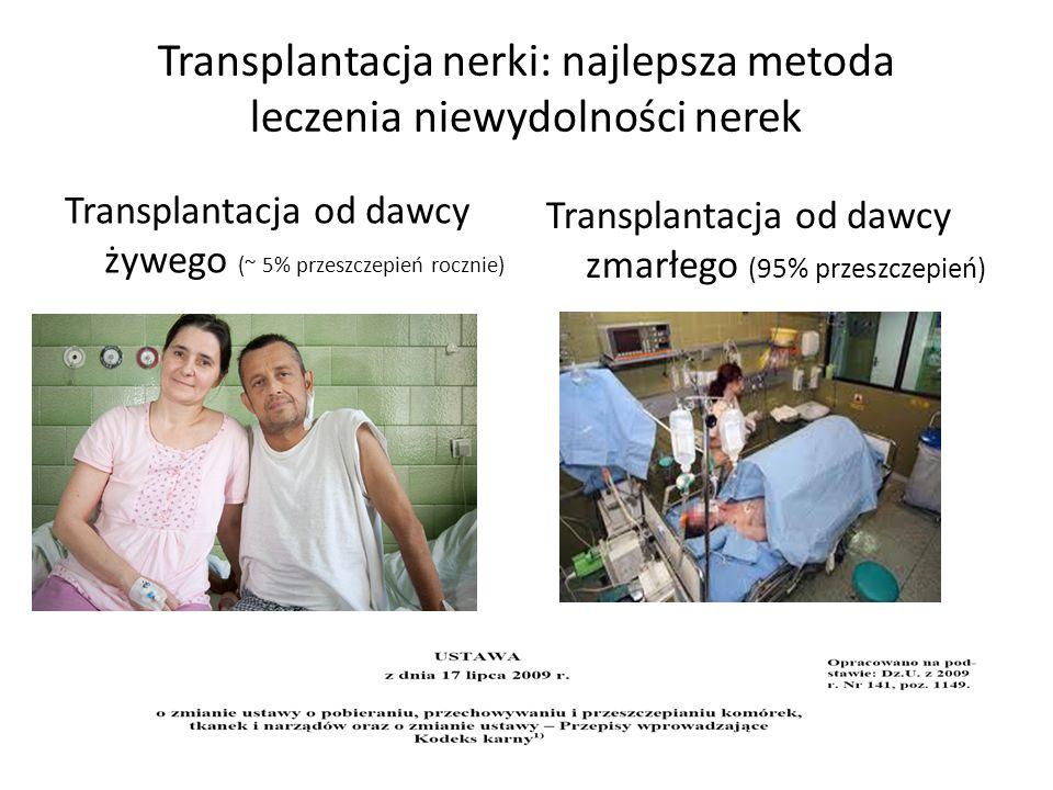 Transplantacja nerki: najlepsza metoda leczenia niewydolności nerek