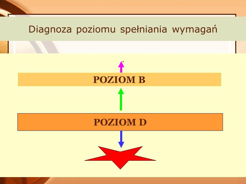 Diagnoza poziomu spełniania wymagań