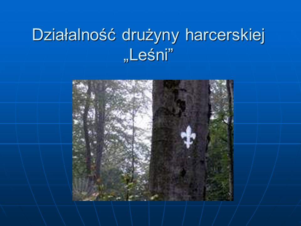 """Działalność drużyny harcerskiej """"Leśni"""