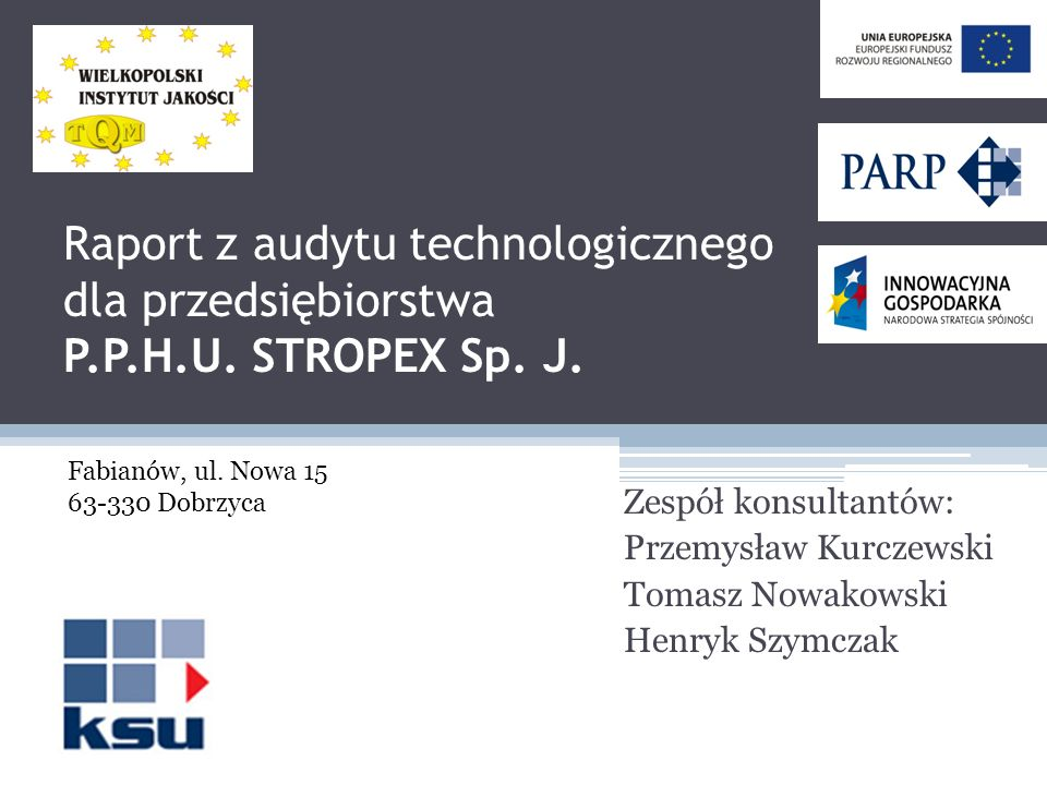 Raport z audytu technologicznego dla przedsiębiorstwa P. P. H. U