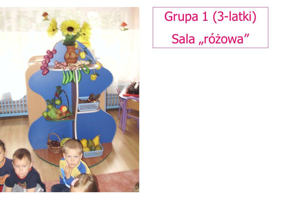 "Grupa 1 (3-latki) Sala ""różowa"