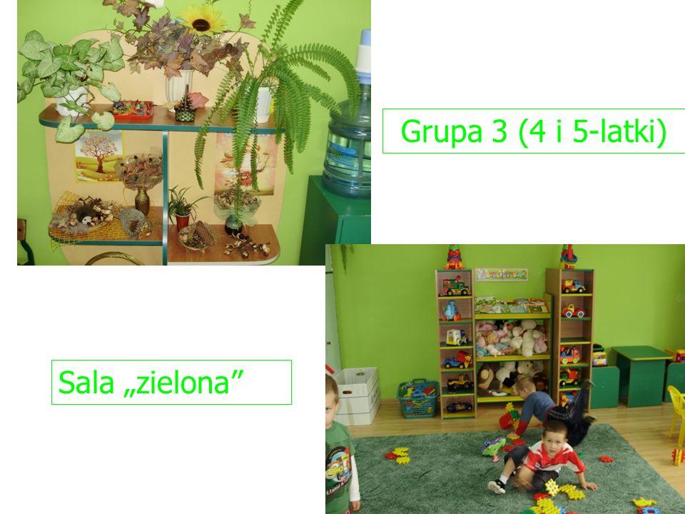 "Grupa 3 (4 i 5-latki) Sala ""zielona"