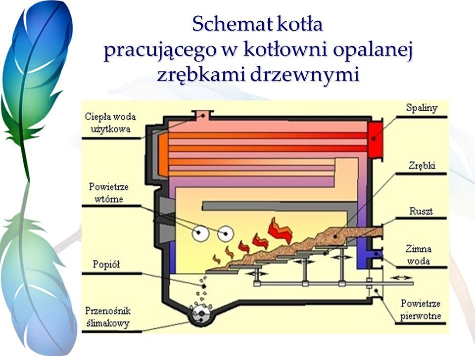 Schemat kotła pracującego w kotłowni opalanej zrębkami drzewnymi