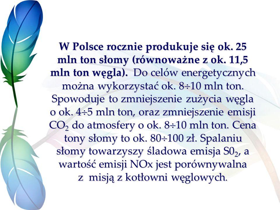 W Polsce rocznie produkuje się ok. 25 mln ton słomy (równoważne z ok