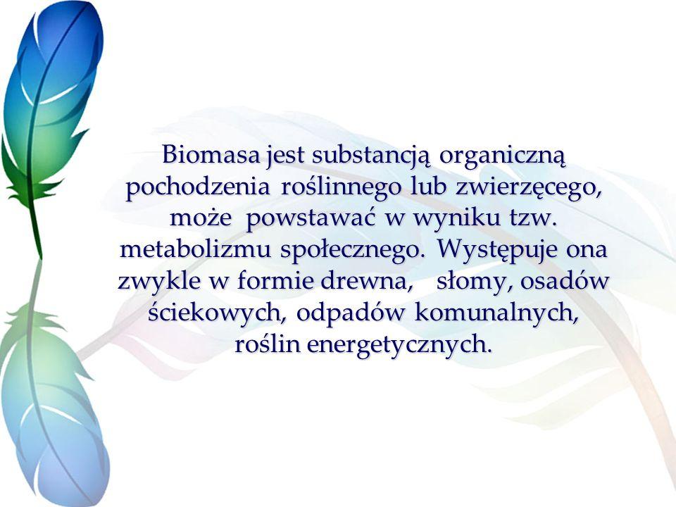 Biomasa jest substancją organiczną pochodzenia roślinnego lub zwierzęcego, może powstawać w wyniku tzw.