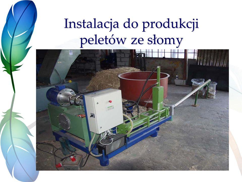 Instalacja do produkcji peletów ze słomy