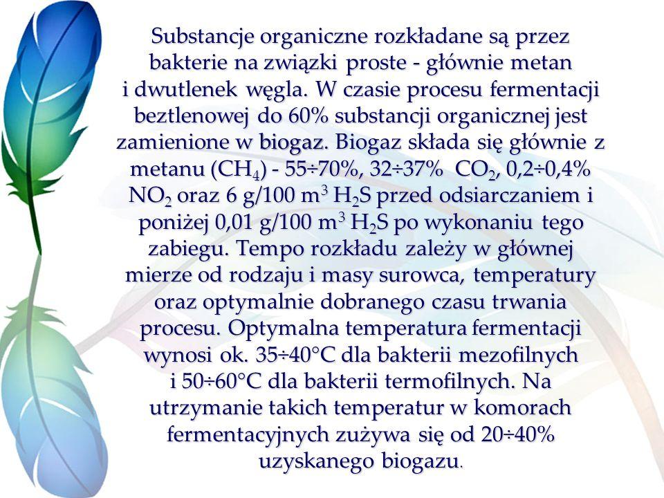 Substancje organiczne rozkładane są przez bakterie na związki proste - głównie metan i dwutlenek węgla.