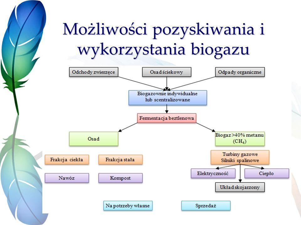 Możliwości pozyskiwania i wykorzystania biogazu