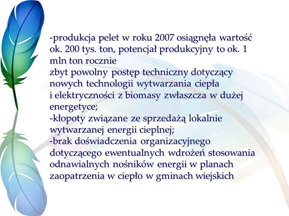 -produkcja pelet w roku 2007 osiągnęła wartość ok. 200 tys