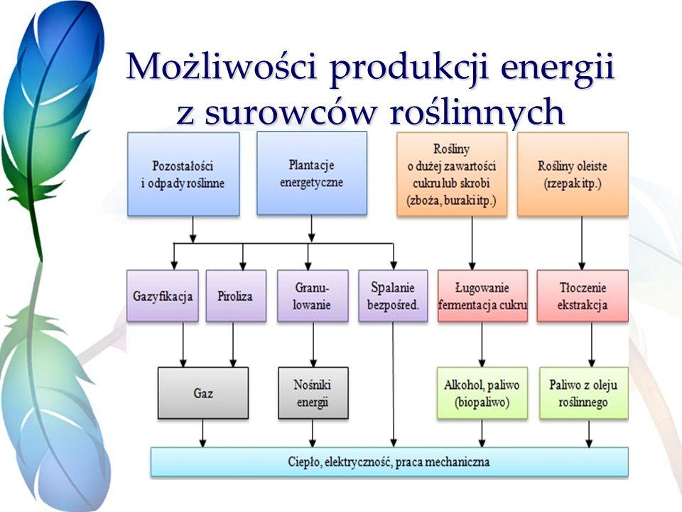 Możliwości produkcji energii z surowców roślinnych