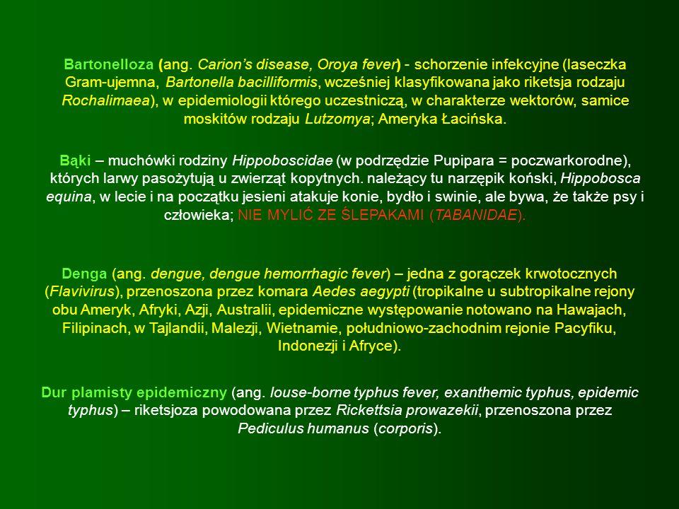 Bartonelloza (ang. Carion's disease, Oroya fever) - schorzenie infekcyjne (laseczka Gram-ujemna, Bartonella bacilliformis, wcześniej klasyfikowana jako riketsja rodzaju Rochalimaea), w epidemiologii którego uczestniczą, w charakterze wektorów, samice moskitów rodzaju Lutzomya; Ameryka Łacińska.