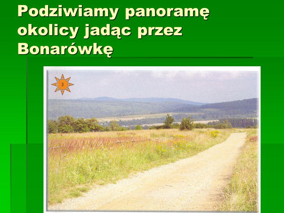 Podziwiamy panoramę okolicy jadąc przez Bonarówkę