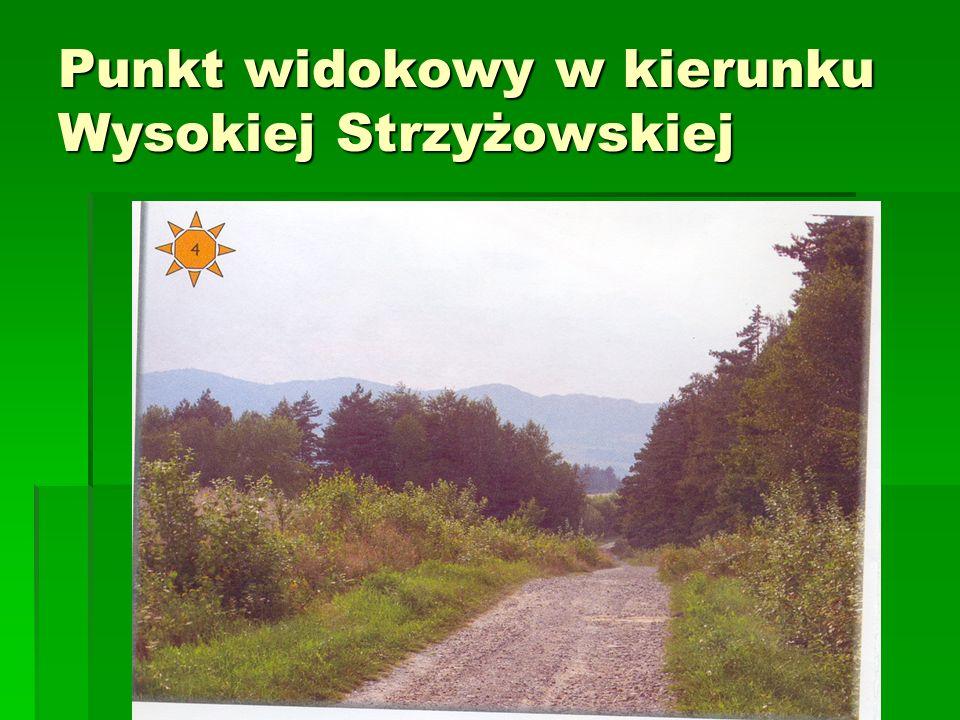Punkt widokowy w kierunku Wysokiej Strzyżowskiej