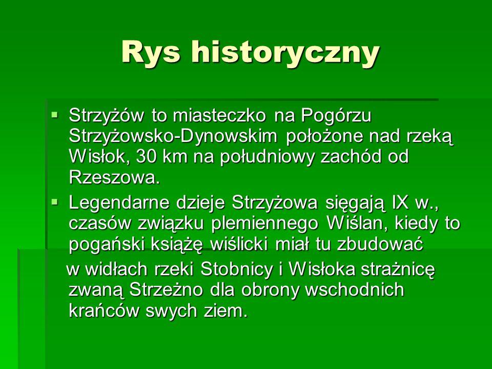 Rys historycznyStrzyżów to miasteczko na Pogórzu Strzyżowsko-Dynowskim położone nad rzeką Wisłok, 30 km na południowy zachód od Rzeszowa.
