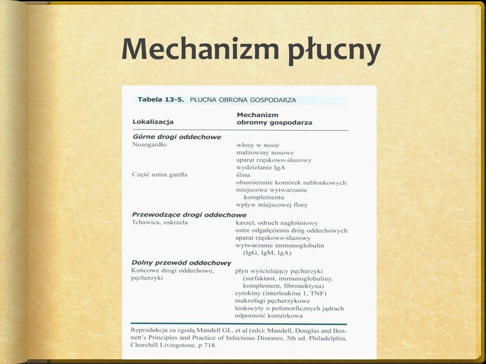 Mechanizm płucny