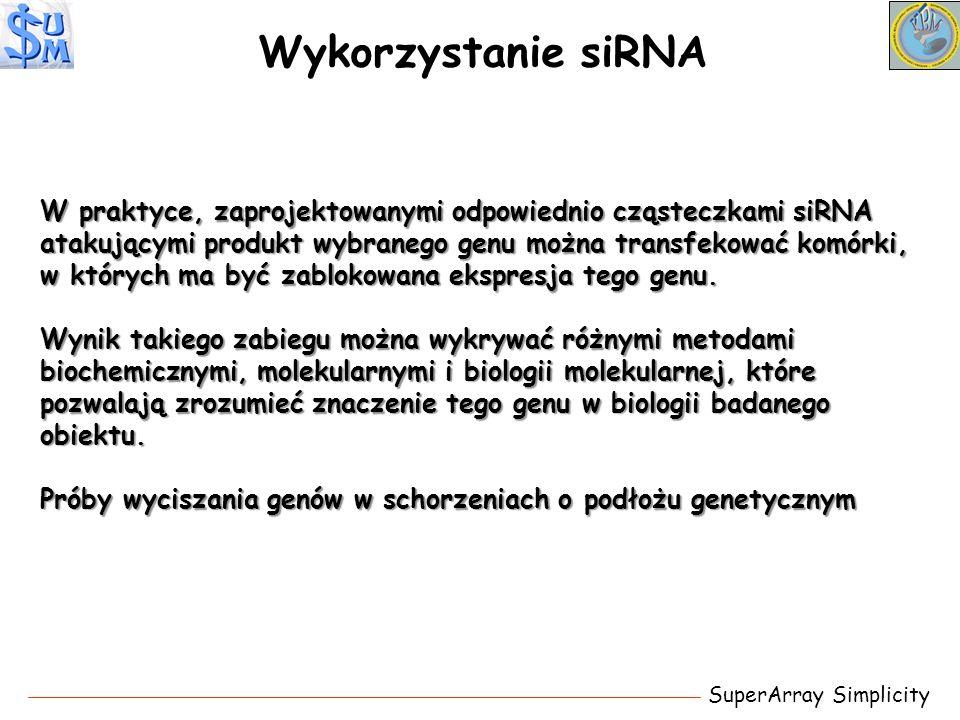 Wykorzystanie siRNA