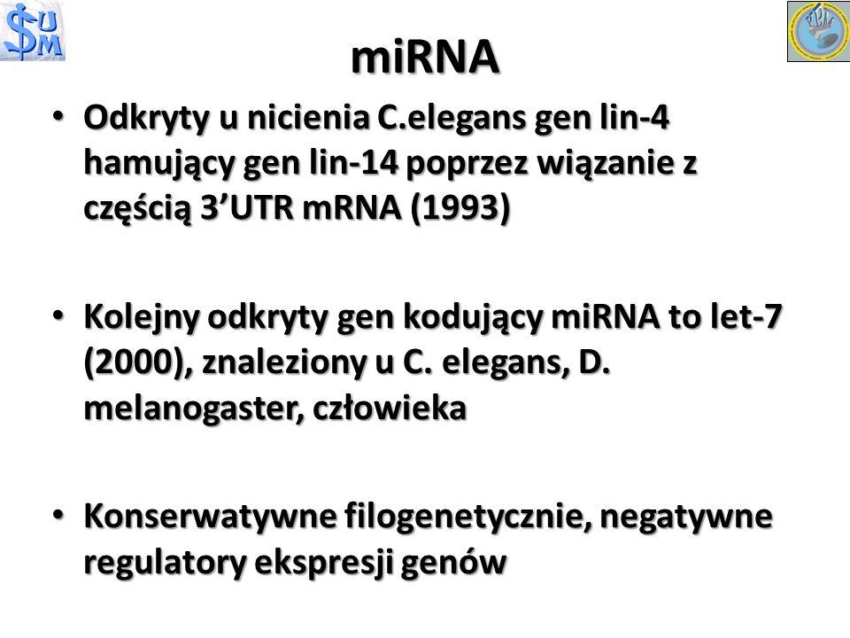 miRNA Odkryty u nicienia C.elegans gen lin-4 hamujący gen lin-14 poprzez wiązanie z częścią 3'UTR mRNA (1993)