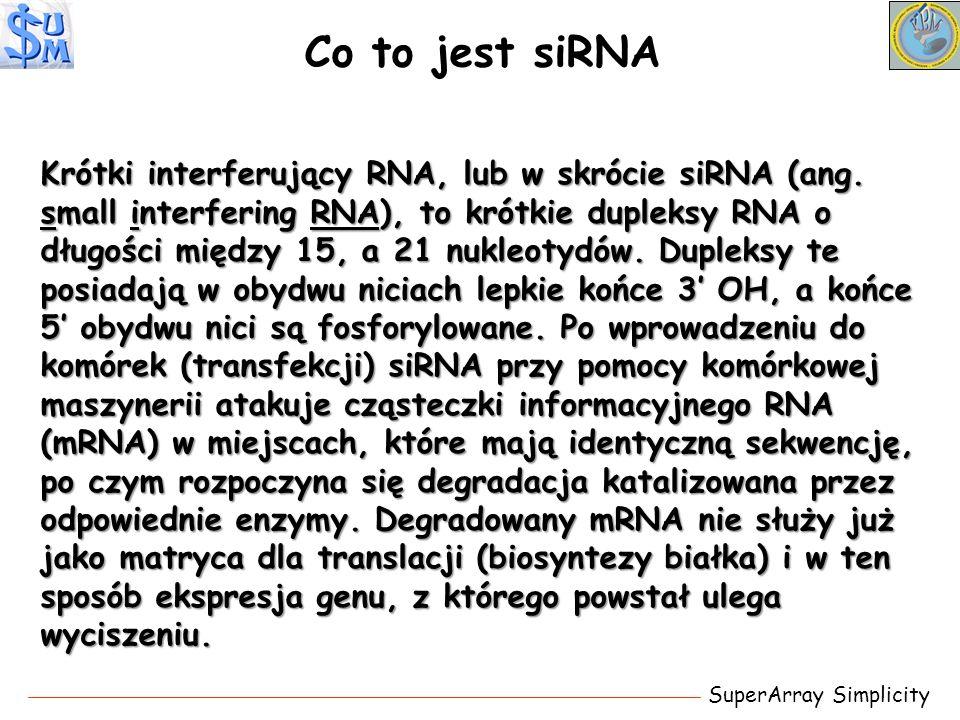 Co to jest siRNA