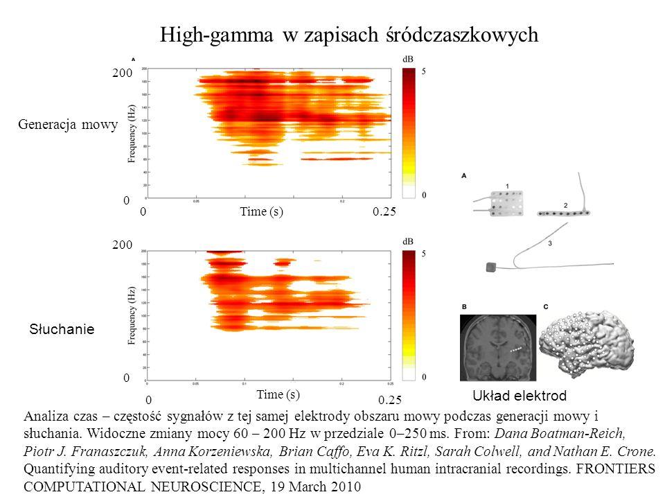 High-gamma w zapisach śródczaszkowych