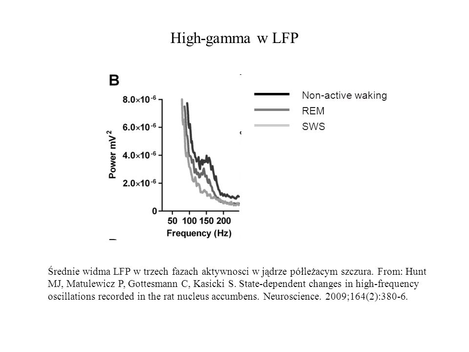 High-gamma w LFP Non-active waking REM SWS