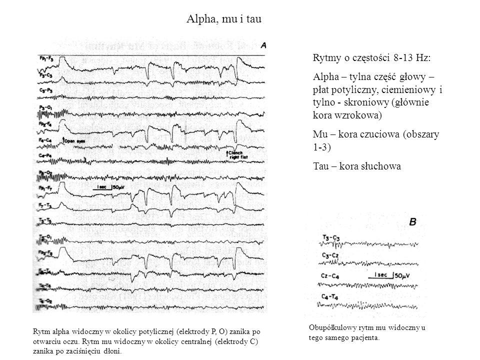 Alpha, mu i tau Rytmy o częstości 8-13 Hz: