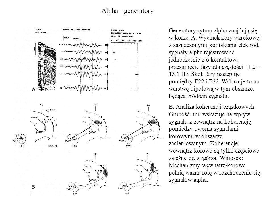 Alpha - generatory