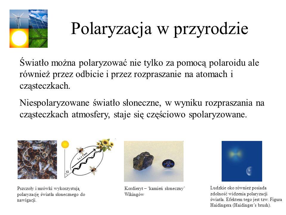 Polaryzacja w przyrodzie
