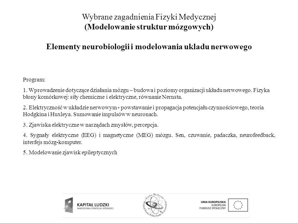 Wybrane zagadnienia Fizyki Medycznej (Modelowanie struktur mózgowych)