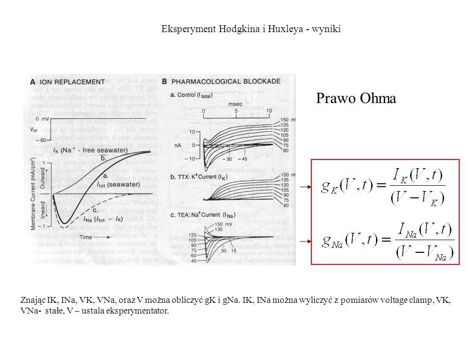 Prawo Ohma Eksperyment Hodgkina i Huxleya - wyniki