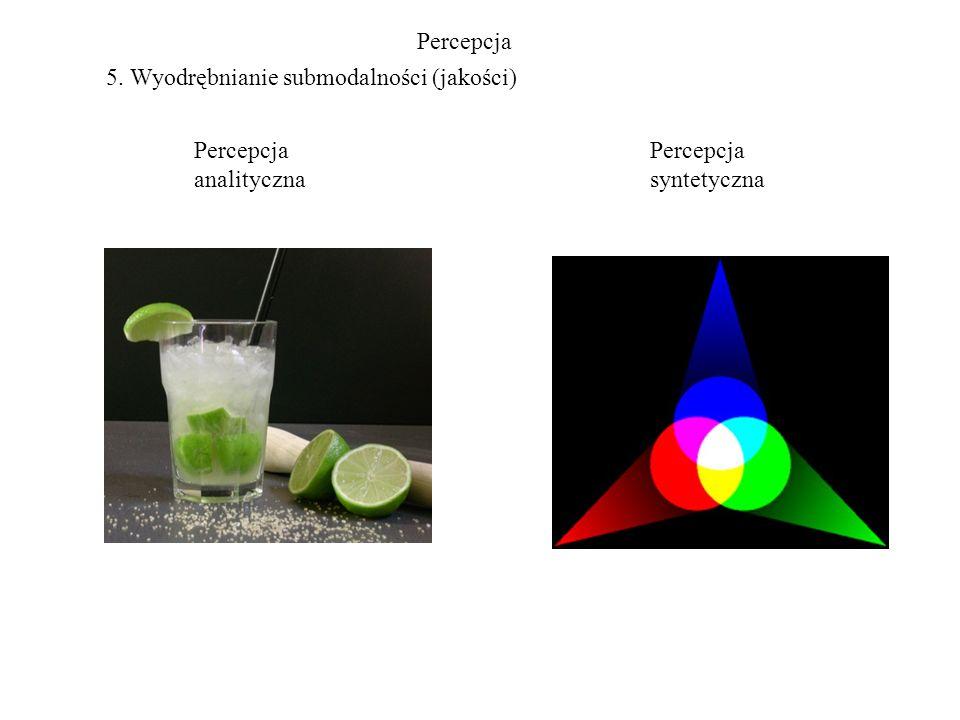 Percepcja 5. Wyodrębnianie submodalności (jakości) Percepcja analityczna Percepcja syntetyczna