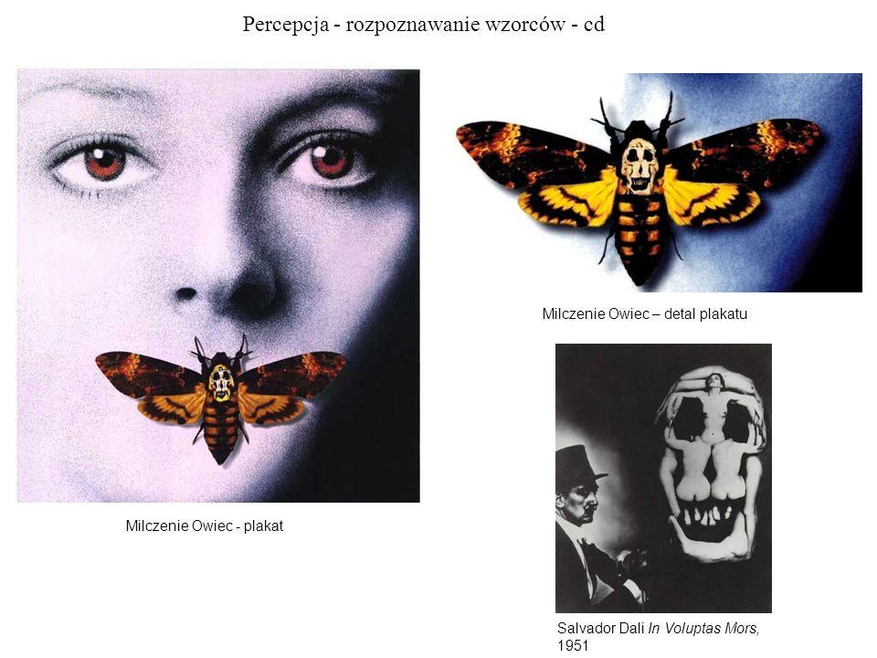 Percepcja - rozpoznawanie wzorców - cd