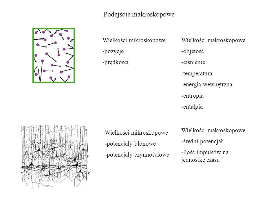 Podejście makroskopowe
