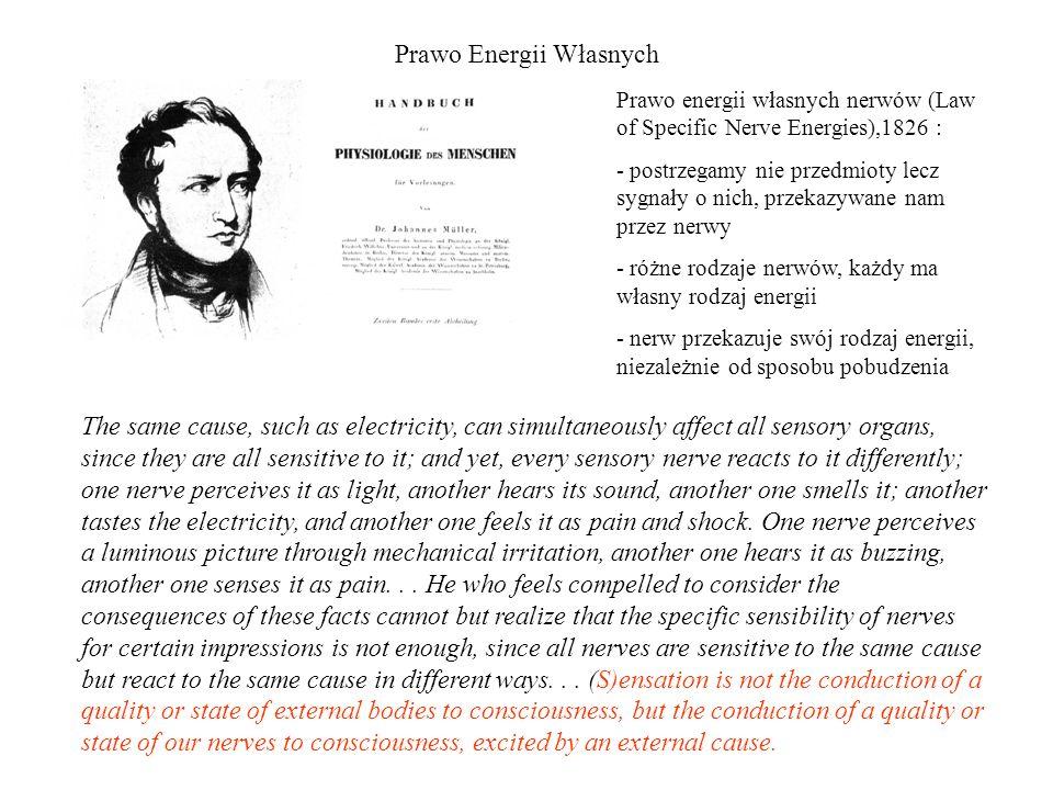 Prawo Energii Własnych