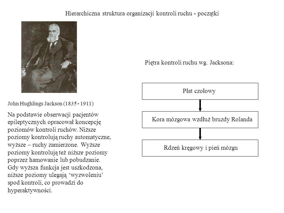 Hierarchiczna struktura organizacji kontroli ruchu - początki
