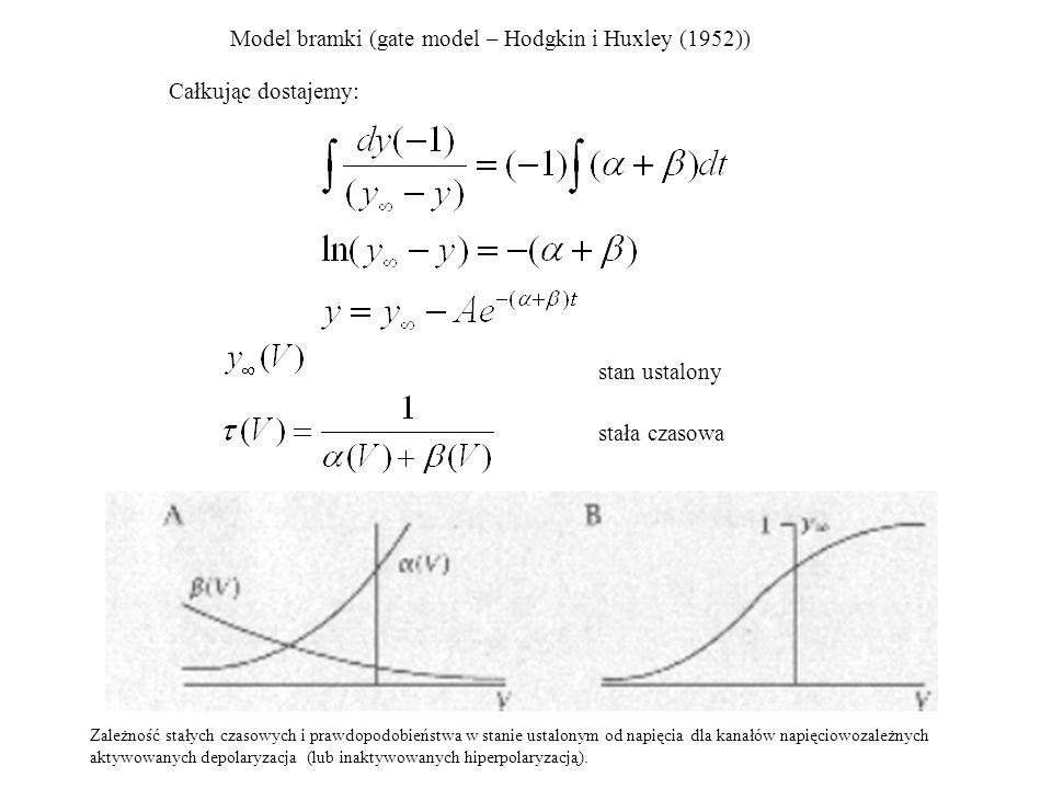 Model bramki (gate model – Hodgkin i Huxley (1952))
