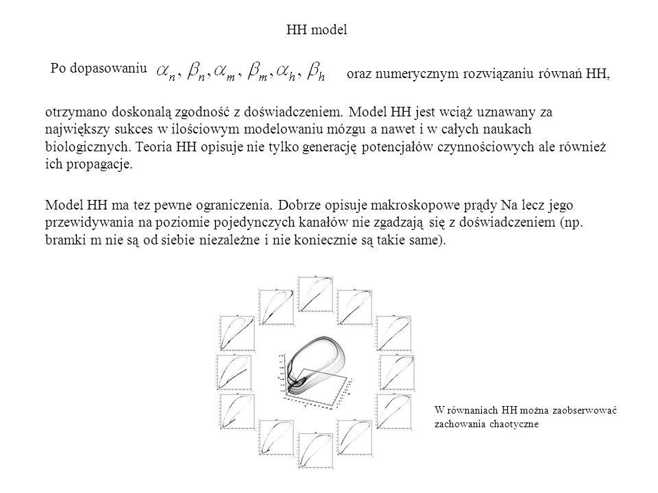 oraz numerycznym rozwiązaniu równań HH,