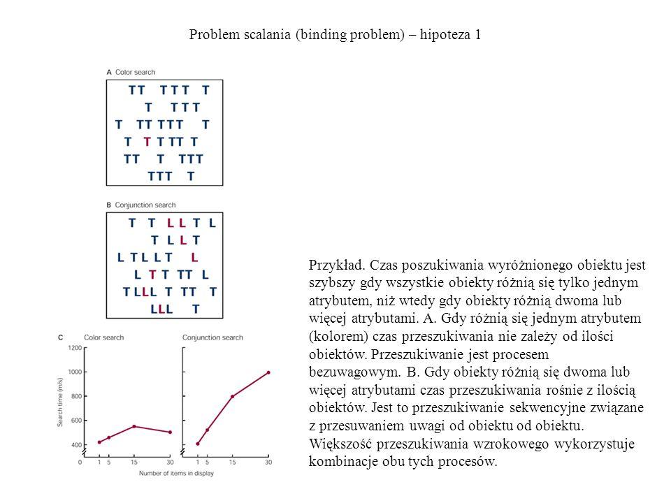 Problem scalania (binding problem) – hipoteza 1