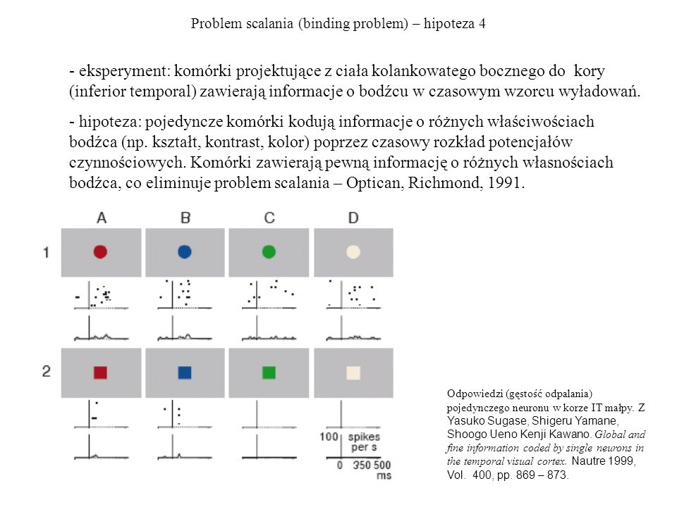 Problem scalania (binding problem) – hipoteza 4