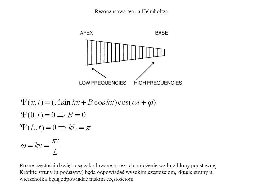 Rezonansowa teoria Helmholtza