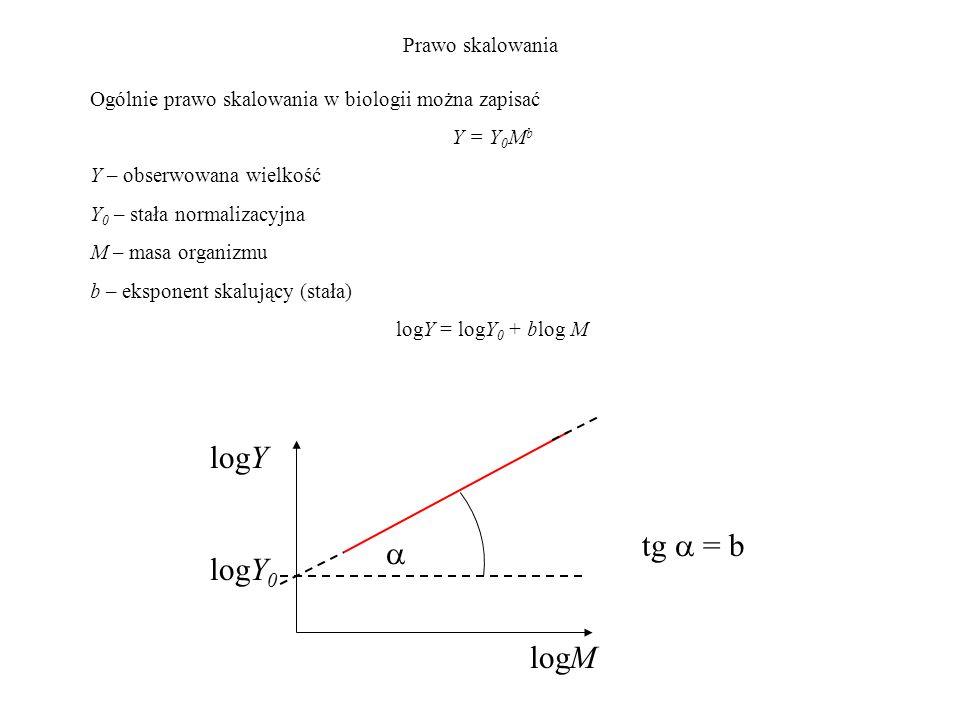 logY tg  = b  logY0 logM Prawo skalowania