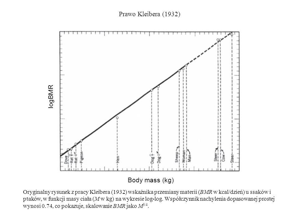 Prawo Kleibera (1932) logBMR Body mass (kg)