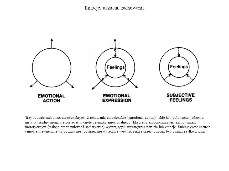 Emocje, uczucia, zachowanie