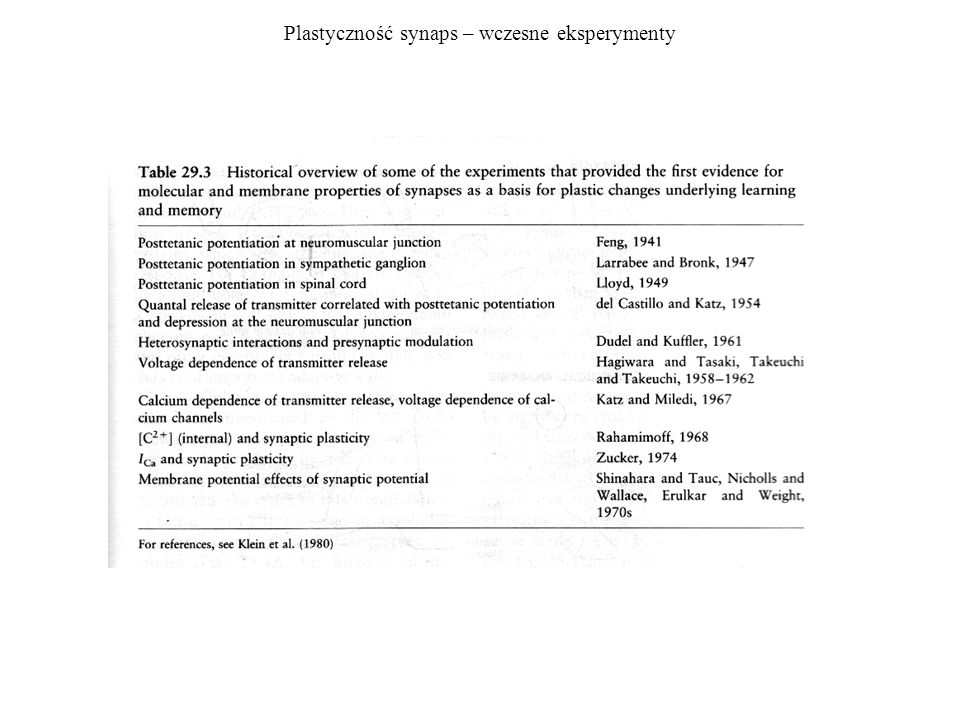 Plastyczność synaps – wczesne eksperymenty