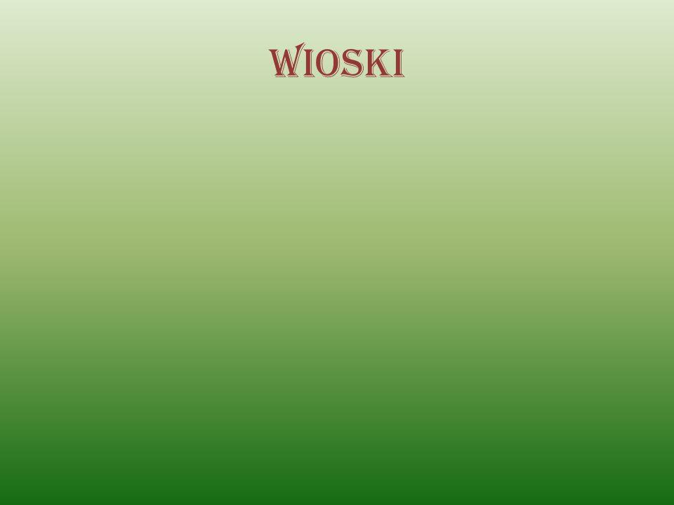 Wioski