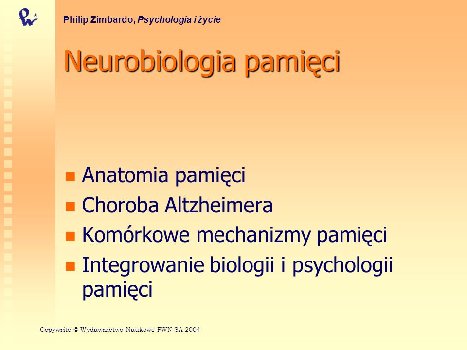 Neurobiologia pamięci